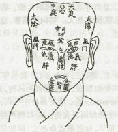 面部五位図